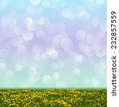 yellow dandelion flowers on a... | Shutterstock . vector #232857559