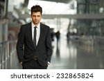 portrait of a successful... | Shutterstock . vector #232865824