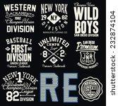 t shirt design  | Shutterstock .eps vector #232874104