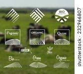 organic food  eco  bio farming  ... | Shutterstock .eps vector #232966807