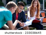 horizontal view of learning... | Shutterstock . vector #233038645