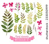 vector floral set. colorful... | Shutterstock .eps vector #233050999