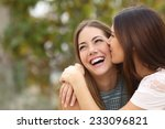 two funny affectionate women... | Shutterstock . vector #233096821