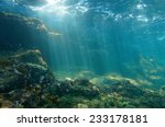 Underwater Sunbeams Through Th...