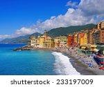 camogli  | Shutterstock . vector #233197009