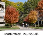 Stock photo college campus with fall colors 233223001