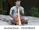 portrait of one yugambeh... | Shutterstock . vector #233258665
