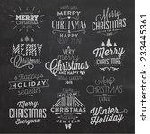 christmas typographic... | Shutterstock .eps vector #233445361