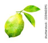 watercolor lemon vector | Shutterstock .eps vector #233460391