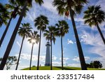 lighthouse with palms at long... | Shutterstock . vector #233517484