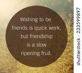 inspirational and motivational... | Shutterstock . vector #233599897