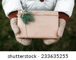 girl holding a christmas... | Shutterstock . vector #233635255