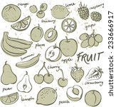 group of fresh fruit doodle... | Shutterstock .eps vector #233666917