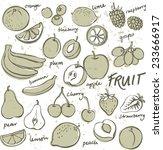 group of fresh fruit doodle... | Shutterstock .eps vector #233666917