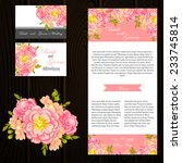 wedding invitation cards with... | Shutterstock .eps vector #233745814