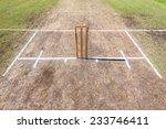 cricket wickets field cricket...   Shutterstock . vector #233746411