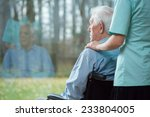 nurse assisting disabled senior ... | Shutterstock . vector #233804005