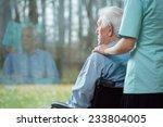 nurse assisting disabled senior ... | Shutterstock . vector #233804005