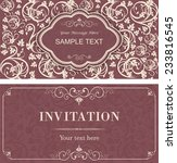 set of vintage invitation cards ... | Shutterstock .eps vector #233816545