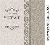 vintage invitation card with... | Shutterstock .eps vector #233816551