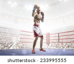 professional boxer is training... | Shutterstock . vector #233995555