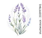 watercolor vector lavender.... | Shutterstock .eps vector #233997841