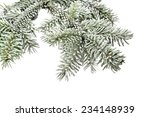 fir tree branch with snow... | Shutterstock . vector #234148939