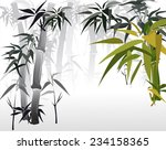 thickets of bamboo  vector... | Shutterstock .eps vector #234158365