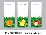 orange  lemon  apple  banner  ... | Shutterstock .eps vector #234262729