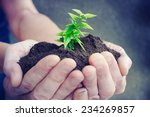 hand and plant  | Shutterstock . vector #234269857