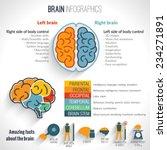 brain structure left analytical ... | Shutterstock .eps vector #234271891