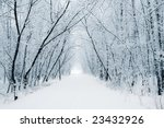Winter White Alley
