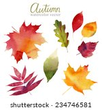 watercolor set of beautiful... | Shutterstock .eps vector #234746581