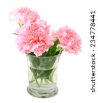 Glass Vase With Pink Carnation...