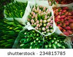 tulips at the flowers wholesale ...   Shutterstock . vector #234815785
