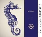 Hand Drawn Seahorse. Vector...