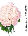 beautiful roses bouquet   Shutterstock . vector #23507722
