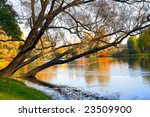 autumn landscape of lake and... | Shutterstock . vector #23509900