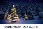 Shiny Christmas Tree Before...