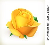 Rose Flower  Vector Illustration
