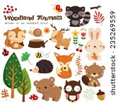 Woodland Animal Vector Set