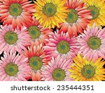 flowers colorful background... | Shutterstock .eps vector #235444351