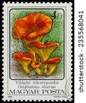 Hungary   Circa 1986  A Stamp...