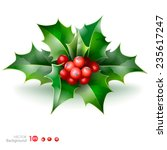christmas holly with berries.... | Shutterstock .eps vector #235617247