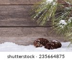Pine Tree Branch And Cones Wit...