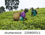Kinihira  Rwanda  November 9 ...
