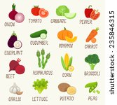 vegetables vector icon set | Shutterstock .eps vector #235846315