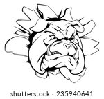 a mean looking bulldog mascot... | Shutterstock .eps vector #235940641