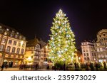 Christmas Tree In Strasbourg  ...