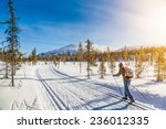 panoramic view of male person... | Shutterstock . vector #236012335